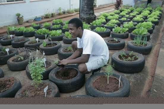Para semilleros Casas de contenedores Pinterest Casas de - jardines con llantas