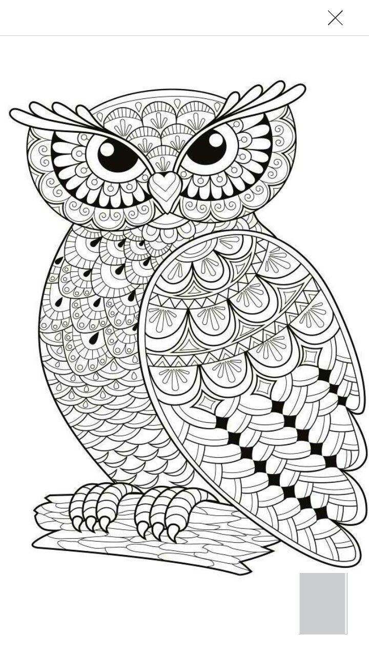 On online owl coloring pages - Owl Coloring Page More