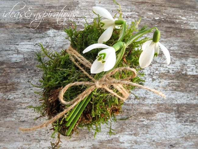 moss moos egg eier easter diy spring ostern osterei fr hling garten garden snowdrops. Black Bedroom Furniture Sets. Home Design Ideas