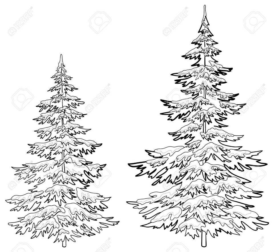 Christmas Tree Drawing Outline Step By Thecannonball Org
