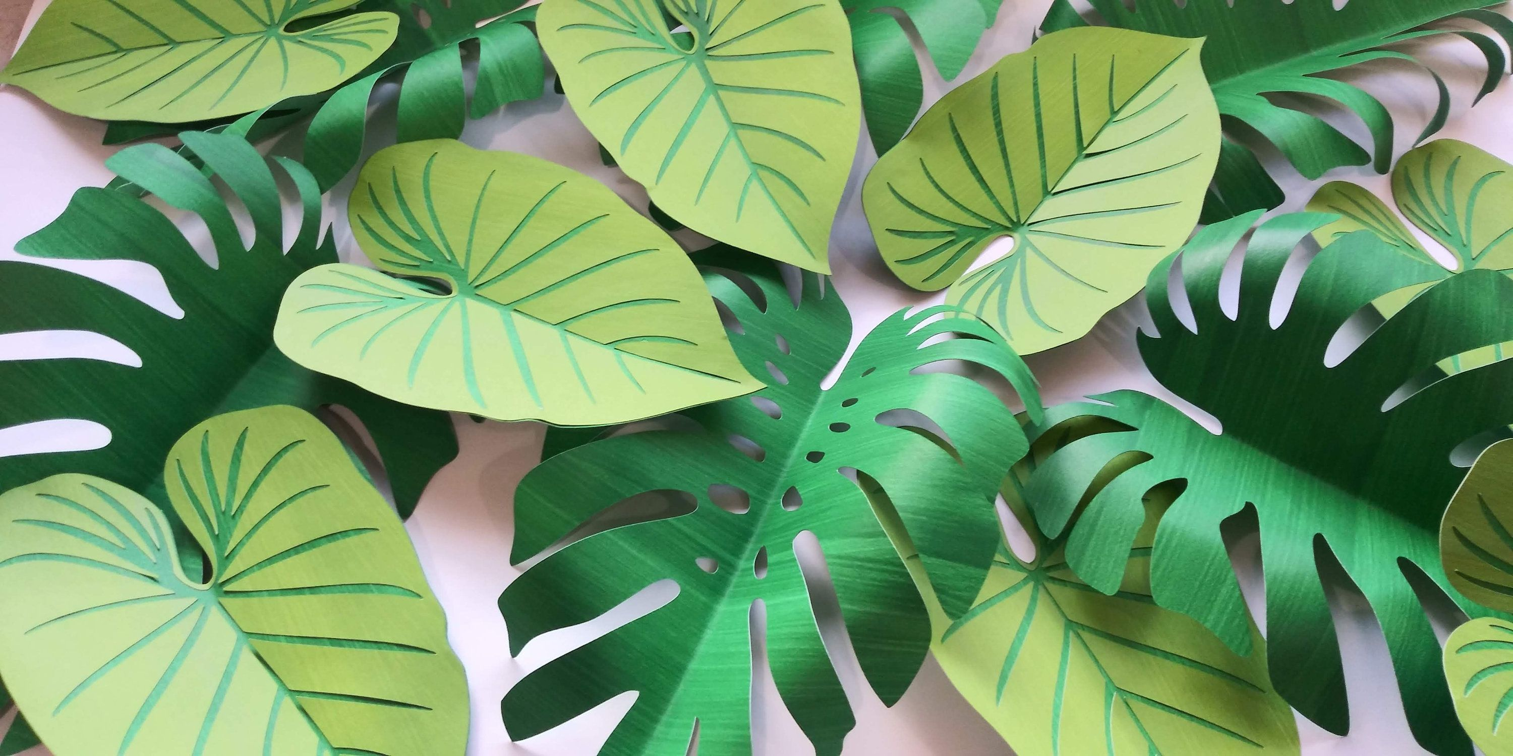 24 Tropical Leaves Paper Monstera and Elephant Ears Green Leaves Heavy Weight Paper D.I.Y Safari Backdrop Jungle Party Baby Shower #elephantearsandtropicals 24 Tropical Leaves Paper Monstera and Elephant Ears Green Leaves Heavy Weight Paper  D.I.Y Safari Backdrop Jungle Party Baby Shower #elephantearsandtropicals