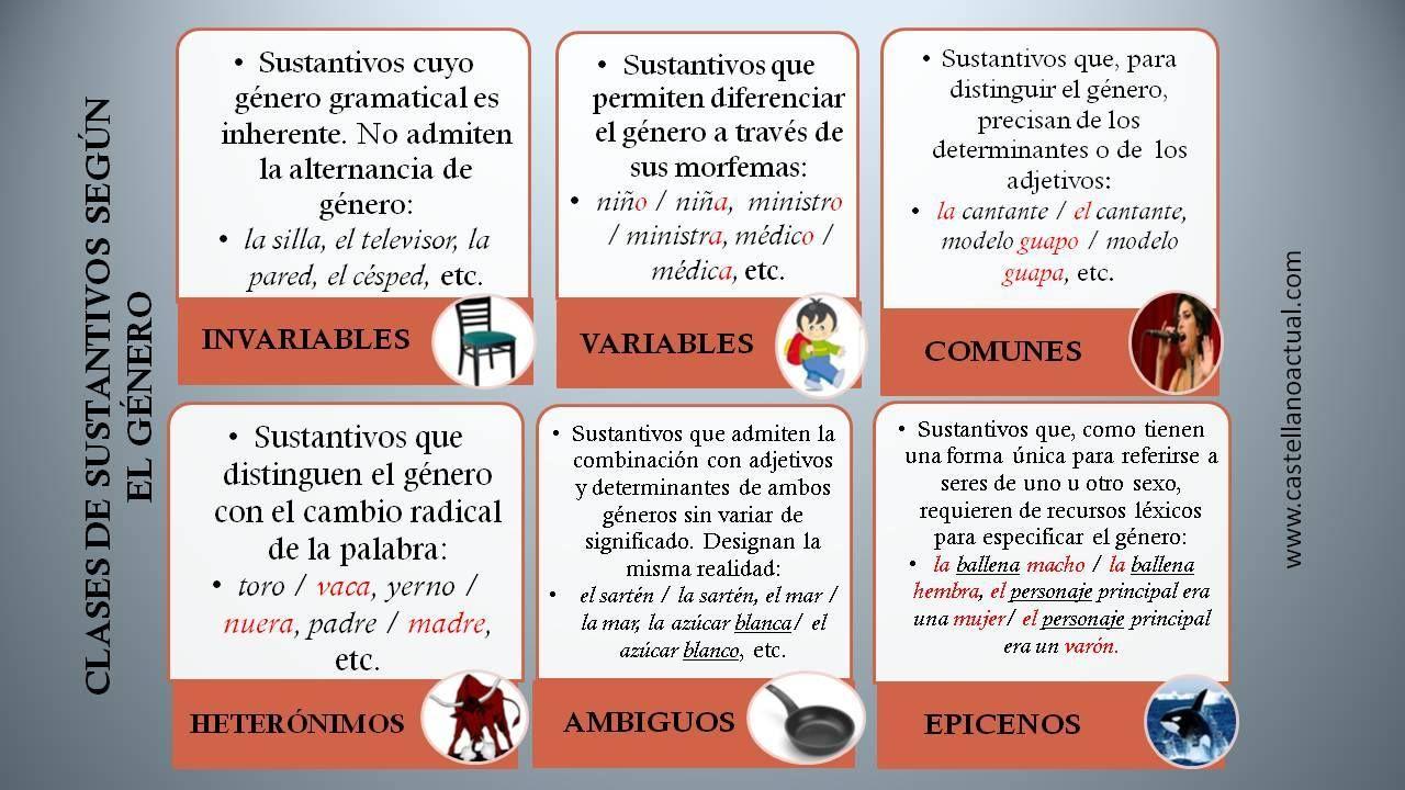 Tipos De Sustantivos Según El Género Adjetivos Sustantivo Didactico