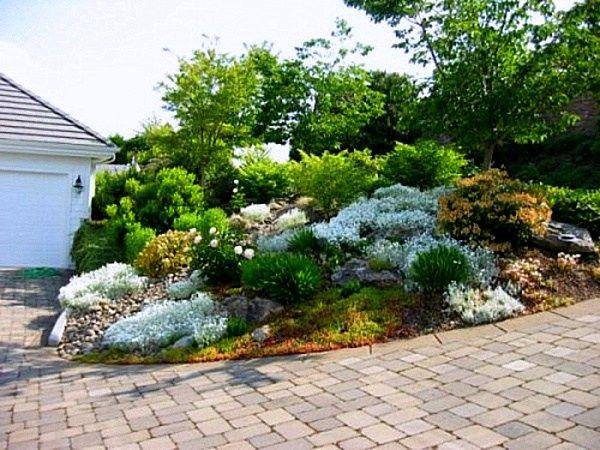 Jardin de pierres : 30 idées d\'aménagement avec des fleurs ...