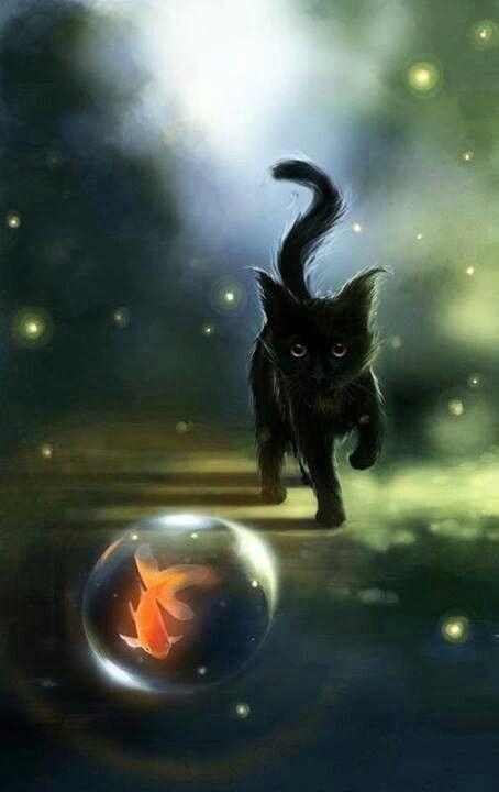 Magical Night Magic Cats Art Black Cat Art