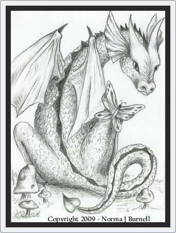 norma burnell  dragon and butterfly  dragon coloring