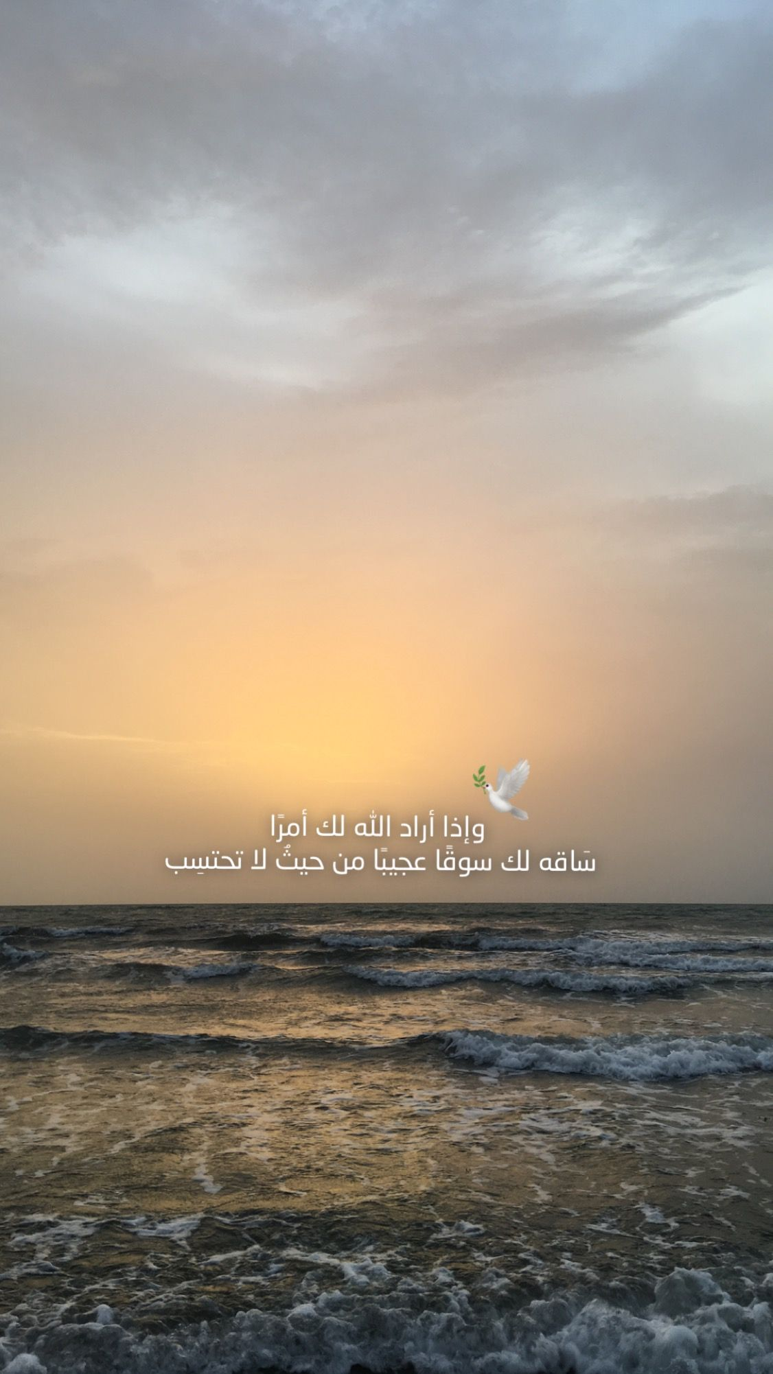 Pin By Cvbnm On استلهم لألهم Beautiful Arabic Words Islamic Pictures Unique Quote