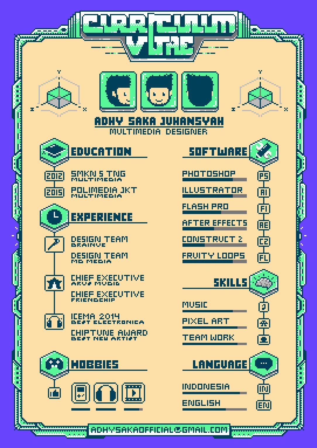 Just Curriculum Vitae Schema Infographie