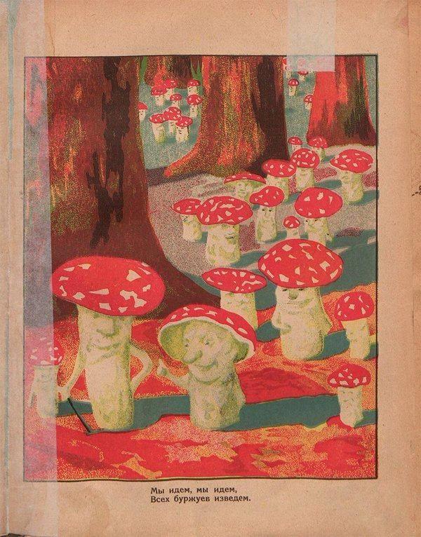 Фото Vrubel Dmitry. | Искусство изображения грибов ...