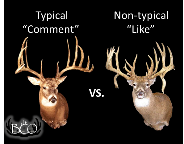 Whitetail deer Be sure to check us out on Facebook  www facebook com