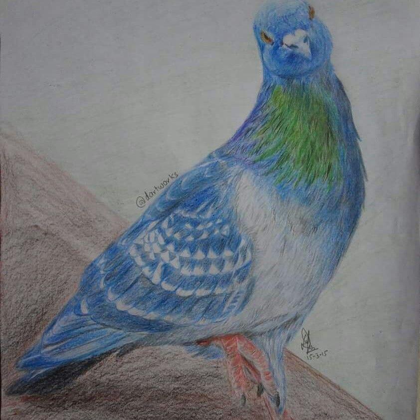 Color pencils Sketch