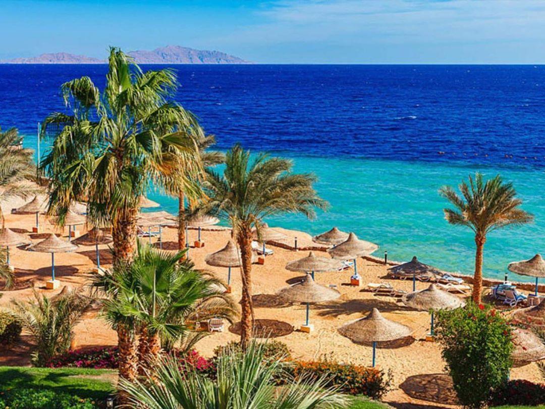 Damar V Instagram Sharm El Shejh Vylet Iz Zaporozhya 7 09 20 5 Nochej Vsyo Vklyucheno Oteli Ghazala Beach 4 Egypt Tours Hurghada Egypt Travel