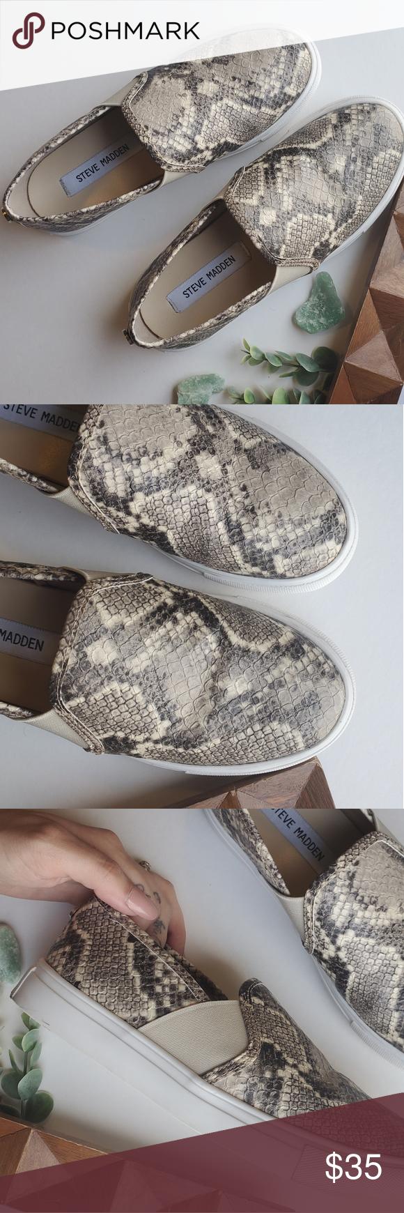 steve madden snakeskin sneakers