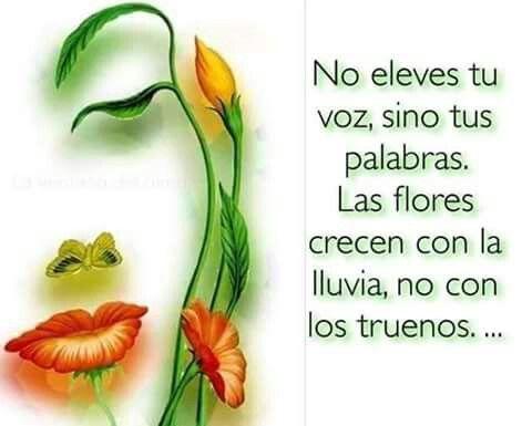 No eleves tu voz, sino tus palabras. Las flores crecen con la lluvia, no con los truenos... www.juancarlos.coach