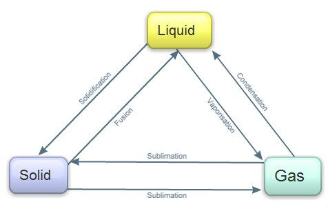 Assessmentgrade 4 Students Will Create A Flow Chart Showing The