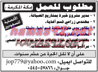 وظائف خاليه السعوديه وظائف شاغرة فى مكة المكرمة Company Logo Tech Company Logos Blog