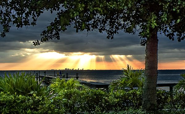 A View Across Tampa Bay From The Restaurant At Bahia Beach In Ruskin Florida Toward Downtown St Petersburg
