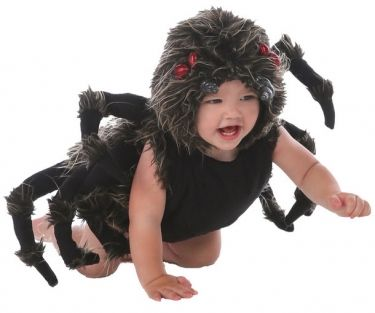 Talan the Tarantula Spider Baby Girl Costume  sc 1 st  Pinterest : spider infant costume  - Germanpascual.Com