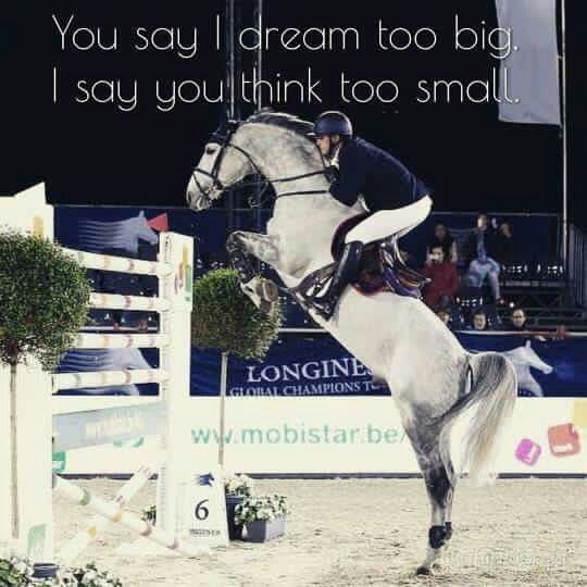 Dream big | Horse Quotes | Horse riding quotes, Horses ...