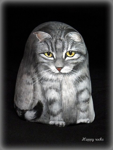 Cute cat painted rock!