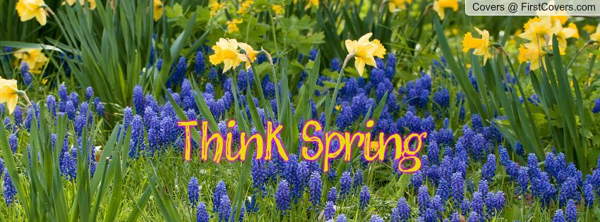 Think Spring Facebook Cover - Cover # | Facebook cover ...