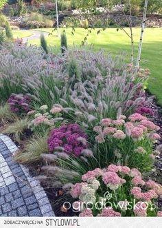 Ornamental grass and flower garden idea.