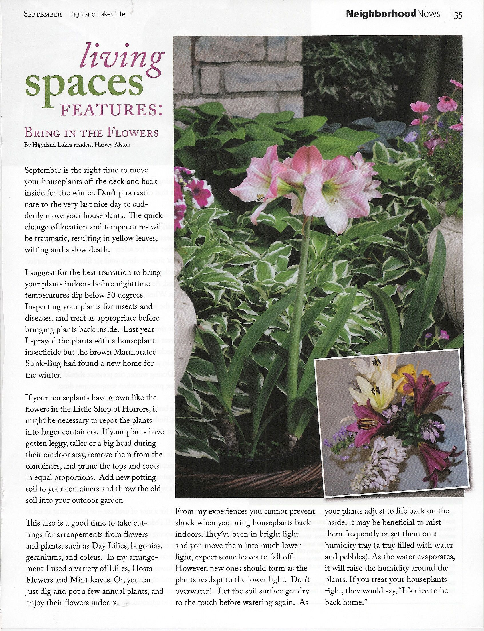 Flowers and plants: a selection of articles