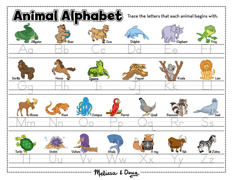 1000 images about crazy alphabet on pinterest alphabet letters - Image Gallery I Animals Names