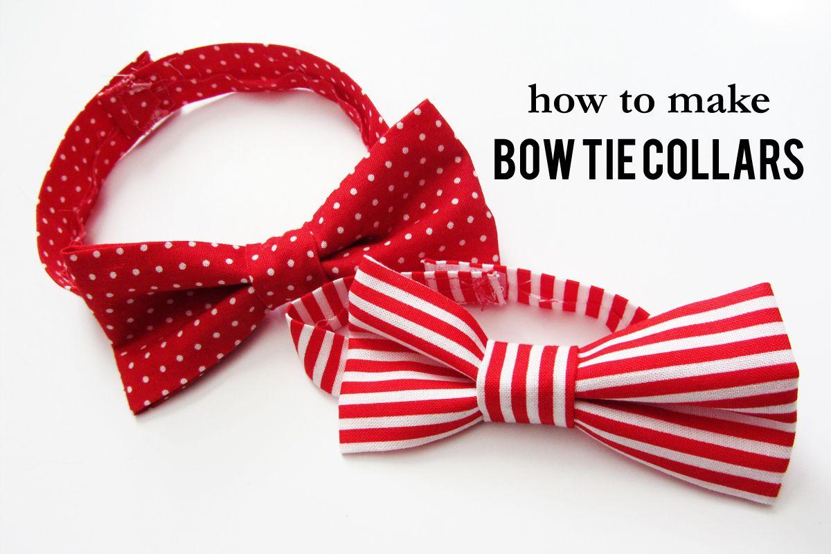 valentine bow tie dog collar Diy dog collar, Dog