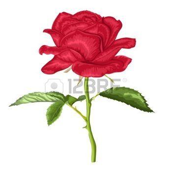 Tatouage Rose Romantique Belle Rose Rouge Avec Une Longue Tige Et