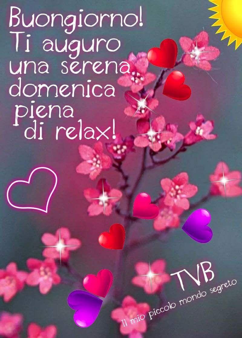 Buongiorno, buona domenica | Buon giorno | Good morning ...