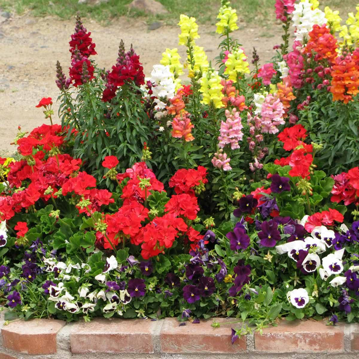 12 Inspiring Garden Flower Bed Designs (With images