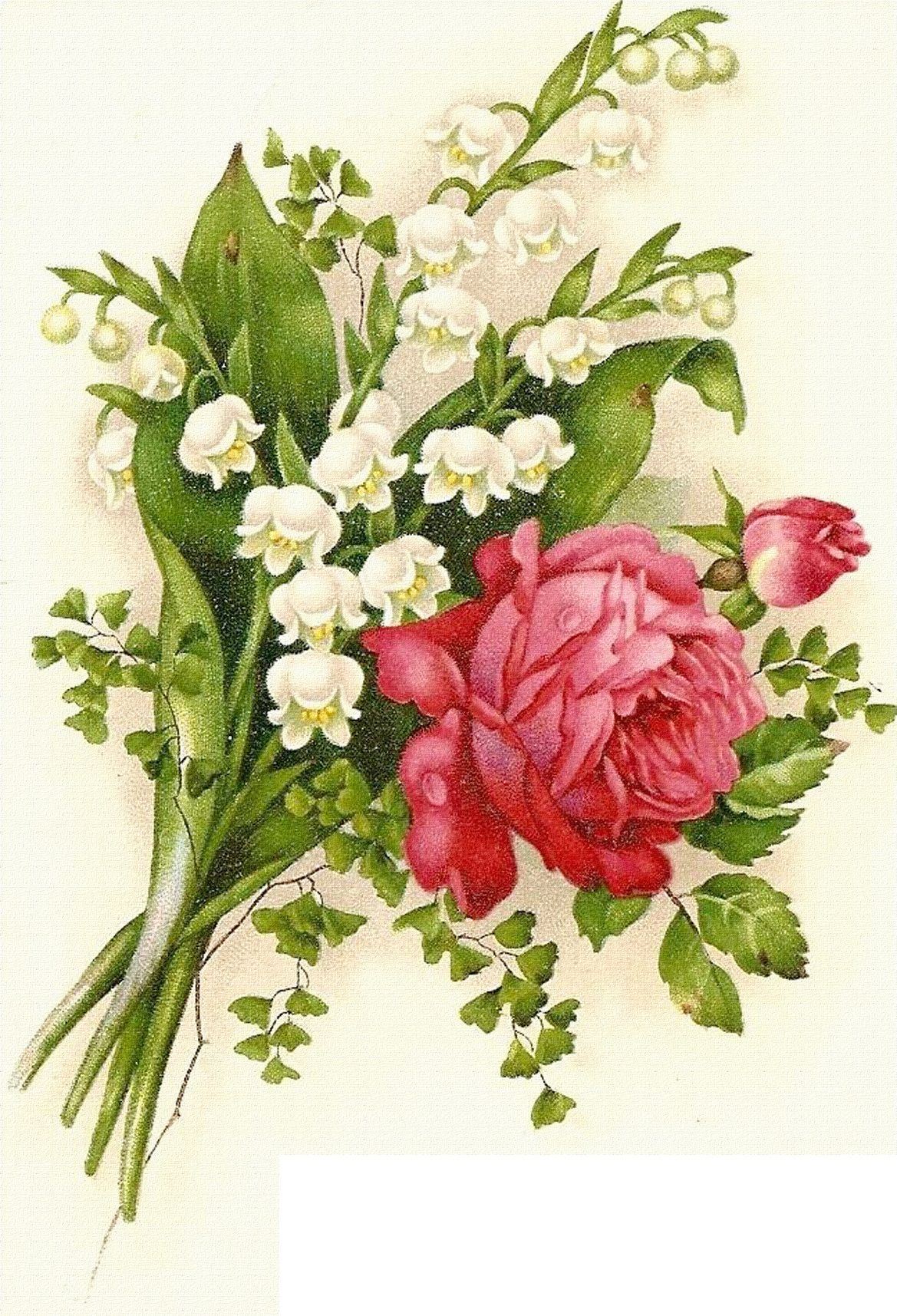 Vintage flowers rose and lily of the valley Розы Pinterest