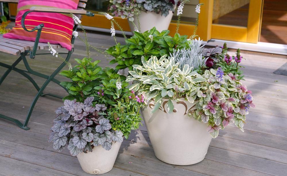 edle herbstromantik auf balkon und terrasse sitzplatz terrasse und herbstbepflanzung. Black Bedroom Furniture Sets. Home Design Ideas