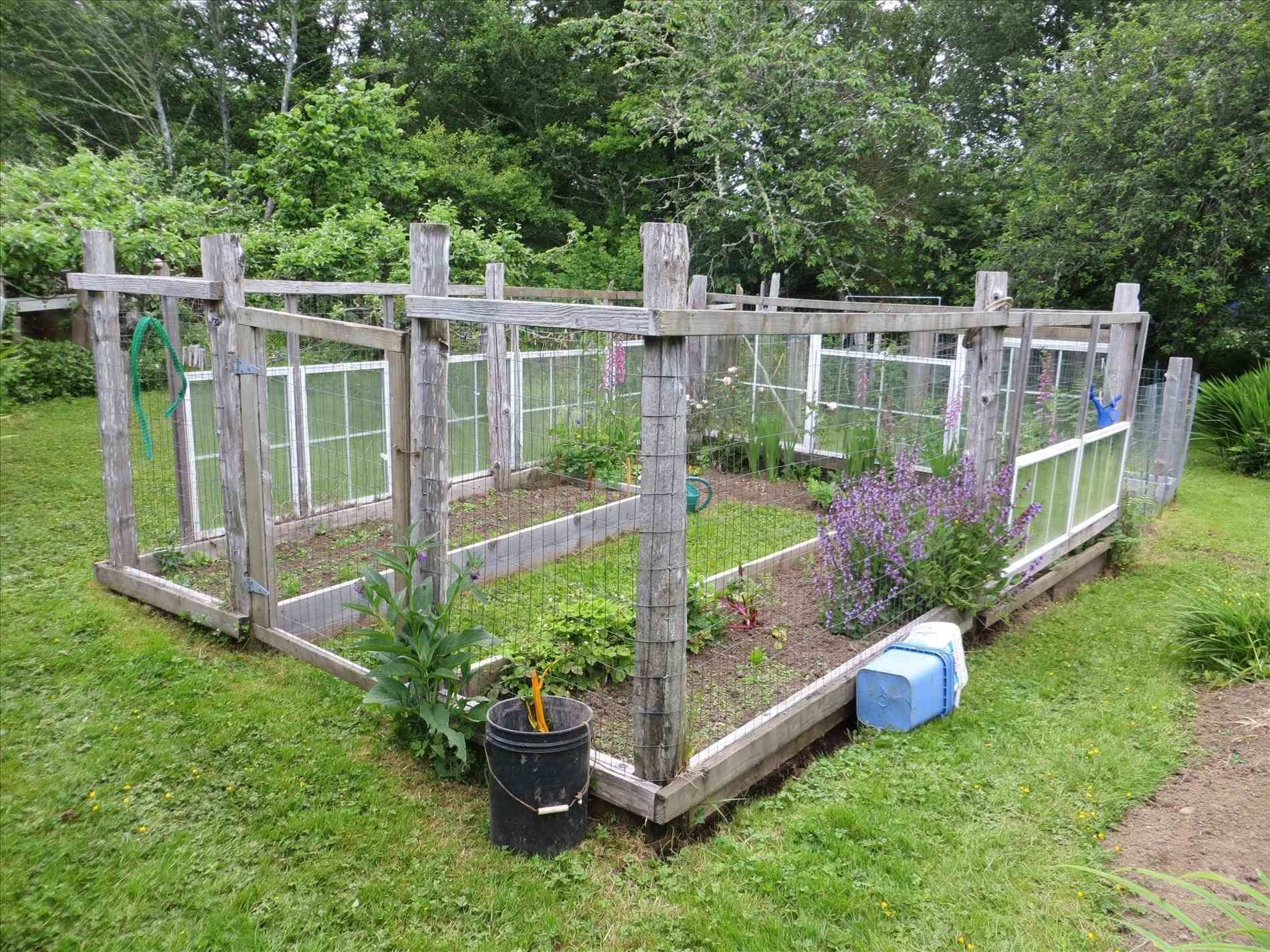 garden-fence-around-chicken-coop-to-keep-dogs-out-welded-wire-with ...