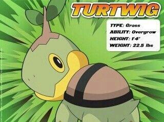 Turtwig Pokemon Images Pokemon Wallpaper