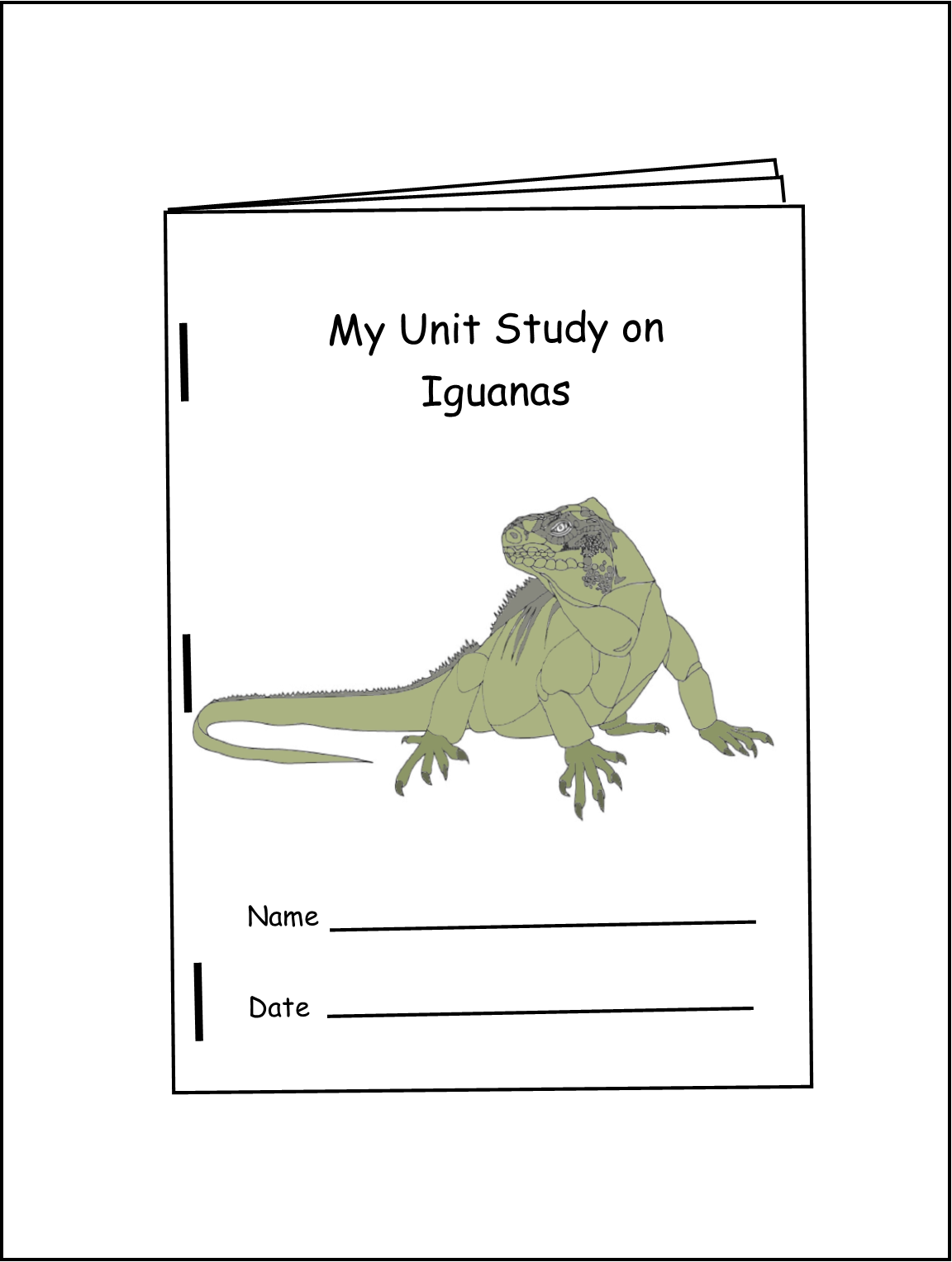 My Unit Study On Iguanas Grades 2 4 30 Pages