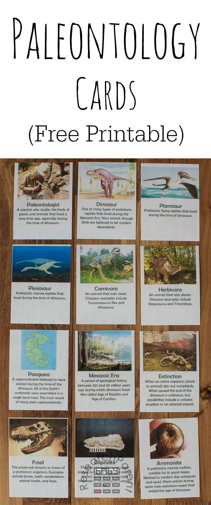 Free Printable Paleontology Cards Paleontology Free Printables Dinosaur Printables [ 1671 x 700 Pixel ]