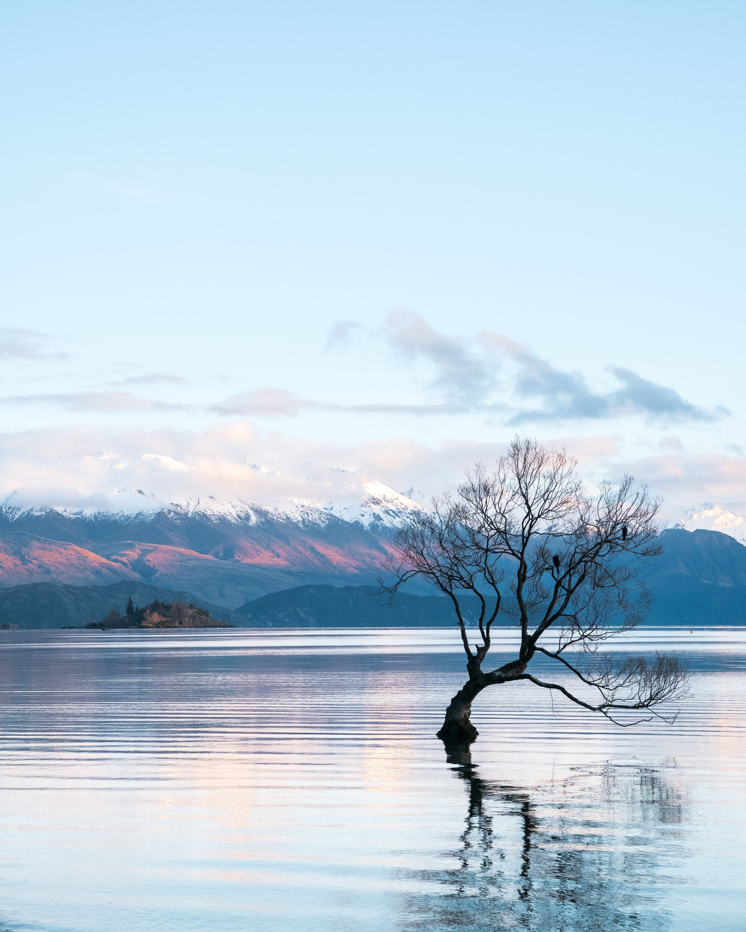 Download Free Images On Unsplash: 20+ New Zealand Pictures