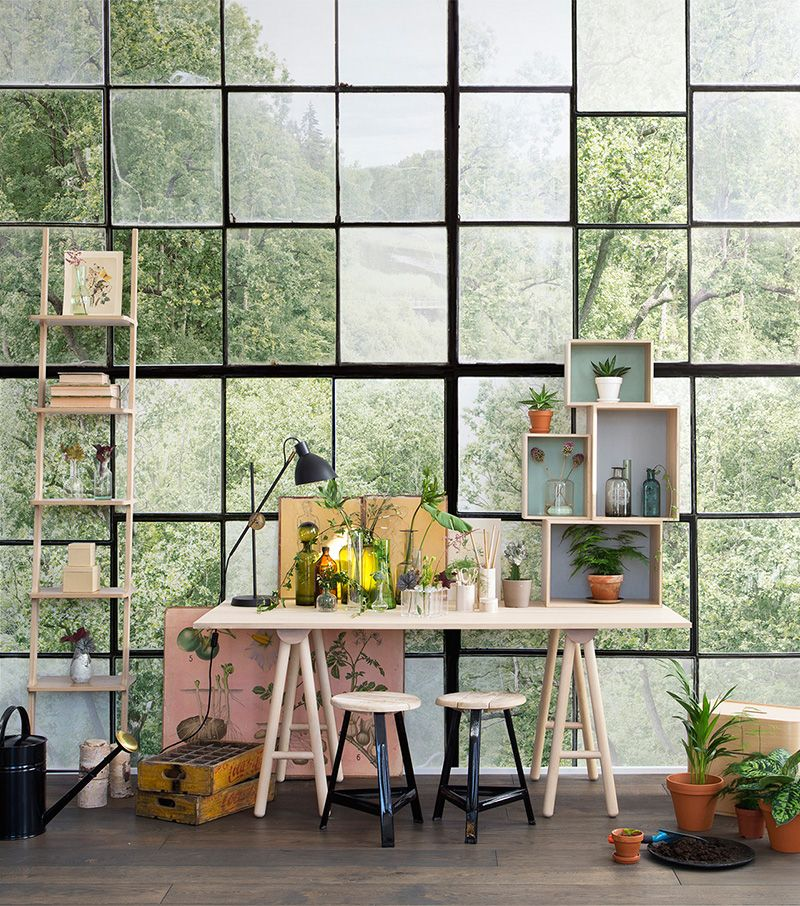 Factory Window   Natur-Tapeten und -Fototapeten in 2019 ...