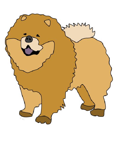 Chow Chow Chow Chow Chow Chow Dogs Dog Sketch