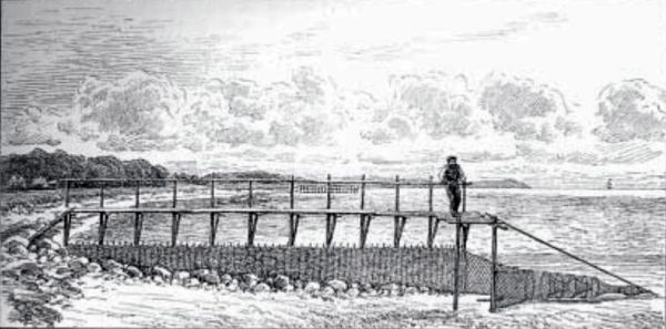 Eel fence of willow twigs from the nineteenth century Denmark