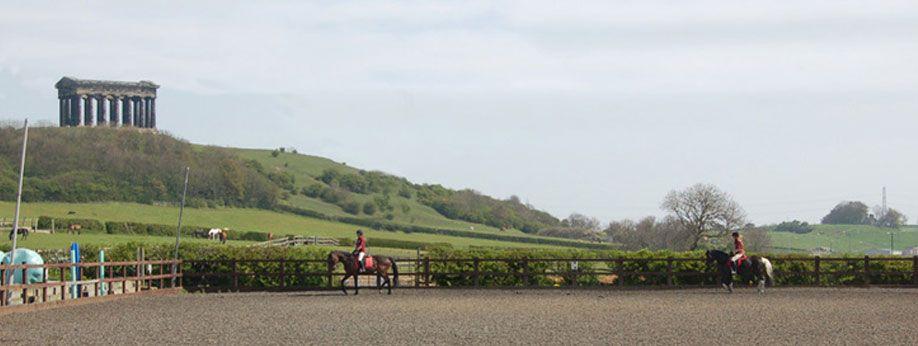 Penshaw Equestrian Centre Equestrian British Horse