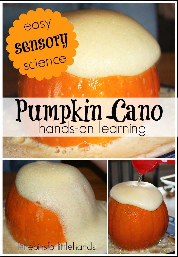 Pumpkin volcano science activity baking soda science easy pumpkin cano easy sensory science forumfinder Images