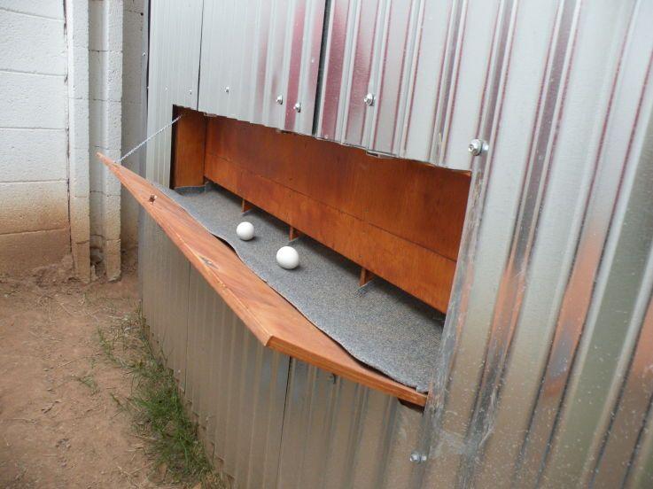 wow! Egg collection door.