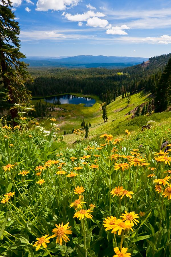 Crumbaugh Lake, Lassen Volcanic National Park, California - The North Fork Feather River, a watercourse of the northern Sierra Nevada, flows generally southwards from its headwaters near Lassen Peak, through Lassen Volcanic National Park and Crumbaugh Lake, ending at Lake Oroville.