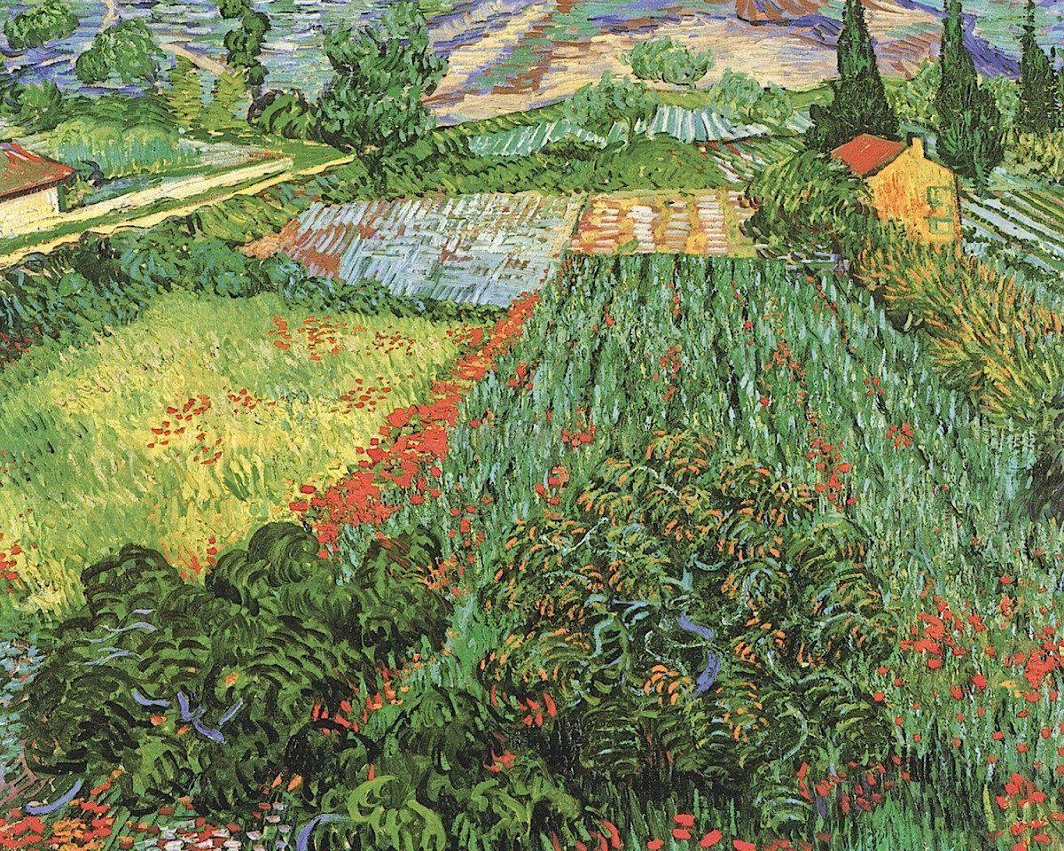Field Of Poppies Saint Remy C 1889 In 2020 Van Gogh Art Artist Van Gogh Van Gogh Paintings