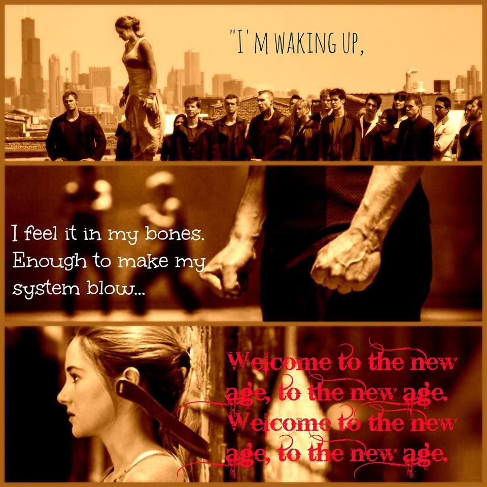 Warriors Imagine Dragons Hunger Games: Divergent And Radioactive By Imagine Dragons. Seriously