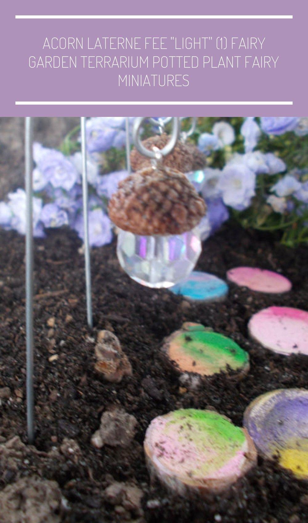 Eichel Laterne Fairy Light 1 Fee Garten Terrarium Topfpflanzen Pflanze Fee Miniaturen Von Fairyelements Fairy Garden Te In 2020 Laterne Garten Topfpflanzen Eichel