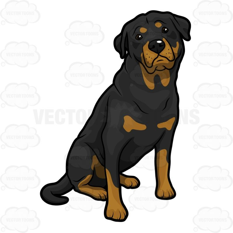 big dog sits and pleads vector clipart rottweiler and dog rh pinterest com rottweiler puppy clipart rottweiler clipart free