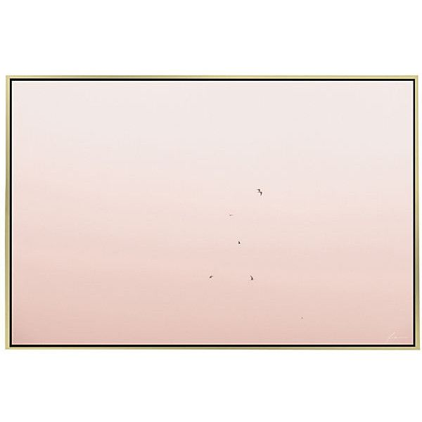 Timothy Hogan Pink Flight Photographs ($899) ❤ liked on Polyvore featuring home, home decor, wall art, leaf wall art, leaves wall art, bird home decor, photo wall art and pink home decor